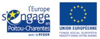 Fonds Social Européen (FSE)